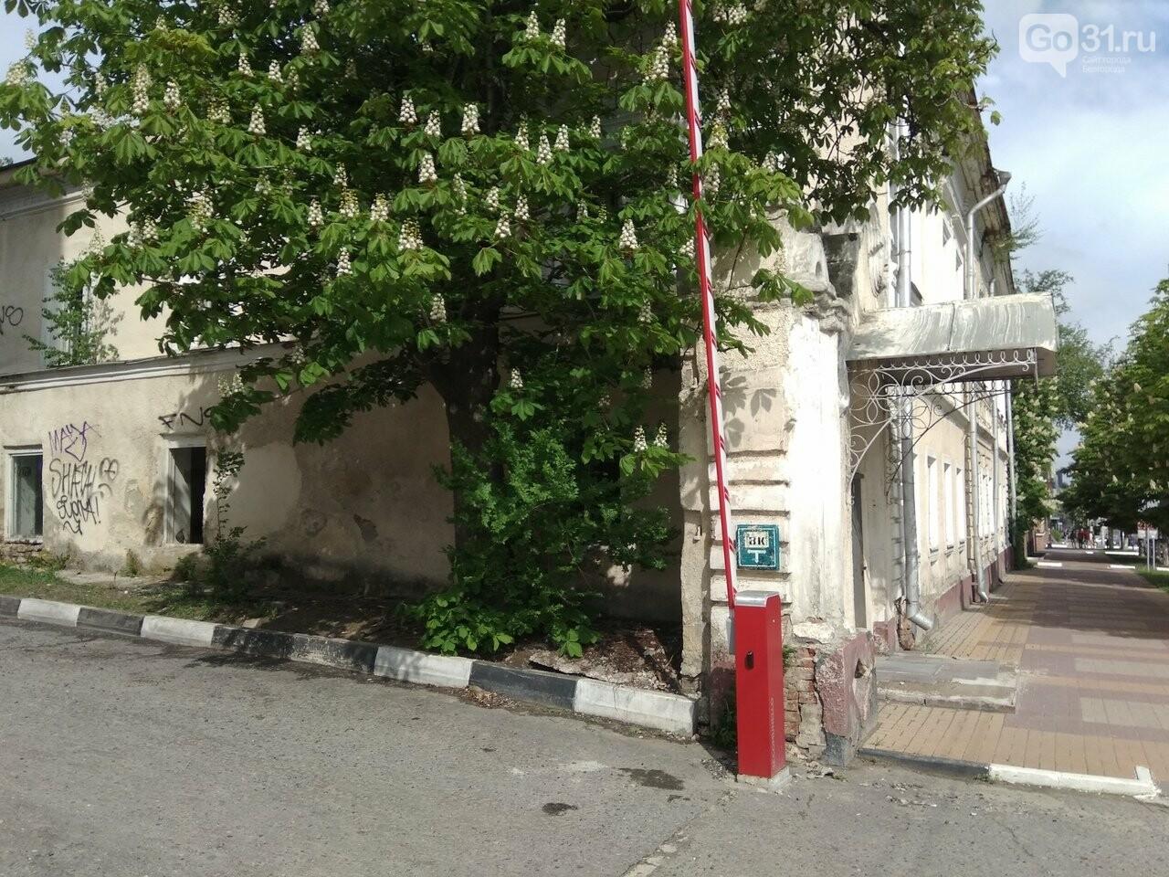 В Белгороде ищут инвестора для реставрации здания женской гимназии Коротковой, фото-7