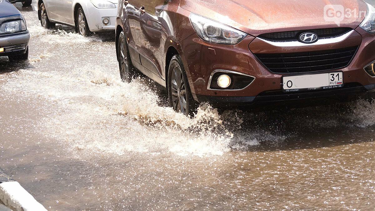 В Белгороде улицы после дождя превратились в Венецию, фото-4
