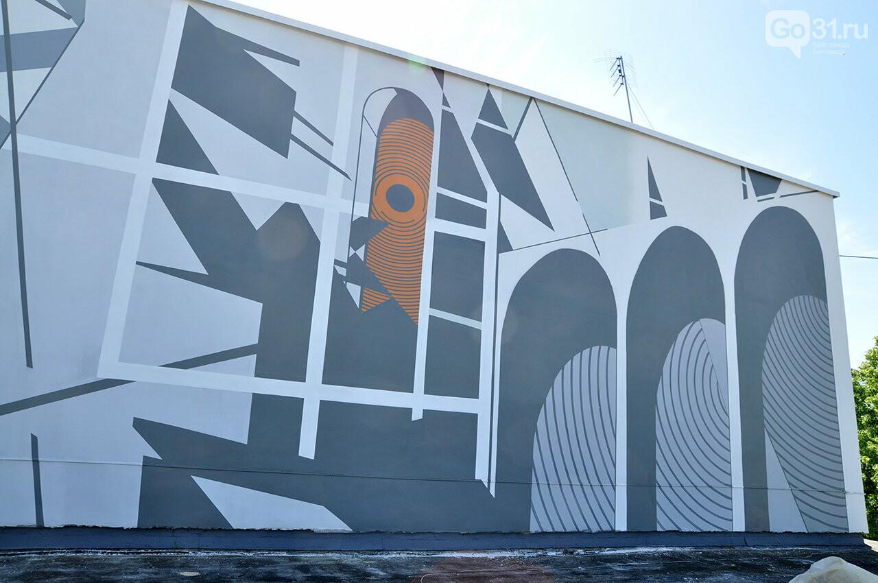 «Здесь занимаются люди искусства». Декан музыкального колледжа Белгорода об абстрактной росписи стен заведения, фото-3