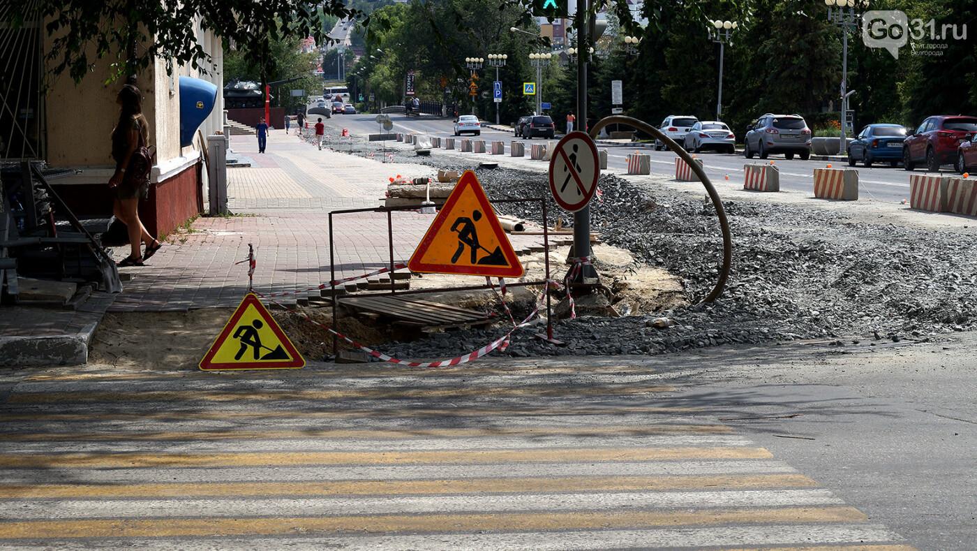 Власти Белгорода будут советоваться с горожанами перед вырубкой деревьев, фото-6, Фото: Сергей Егоров