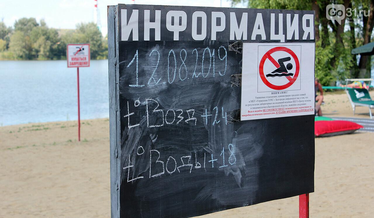 Доступный отдых. В Белгороде презентовали пляж для инвалидов, фото-11