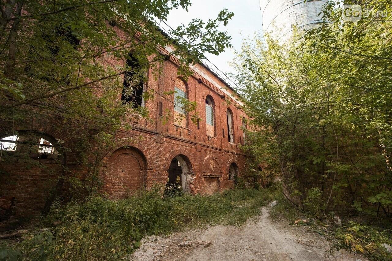 В Белгородской области объявили конкурс на проект благоустройства сахарного завода, фото-5