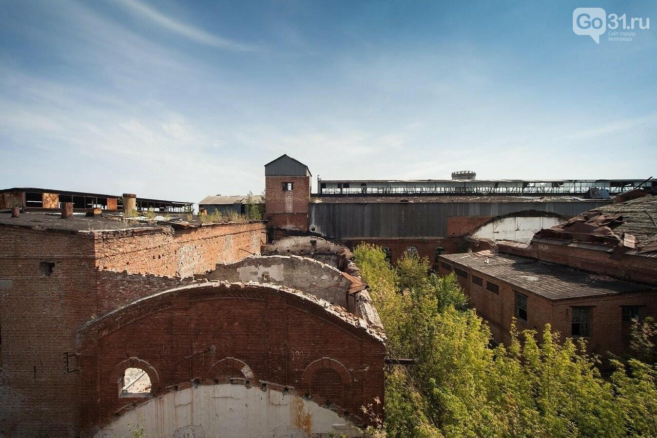 В Белгородской области объявили конкурс на проект благоустройства сахарного завода, фото-1