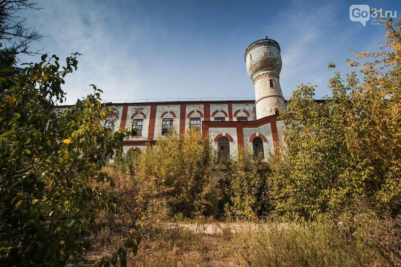 В Белгородской области объявили конкурс на проект благоустройства сахарного завода, фото-2