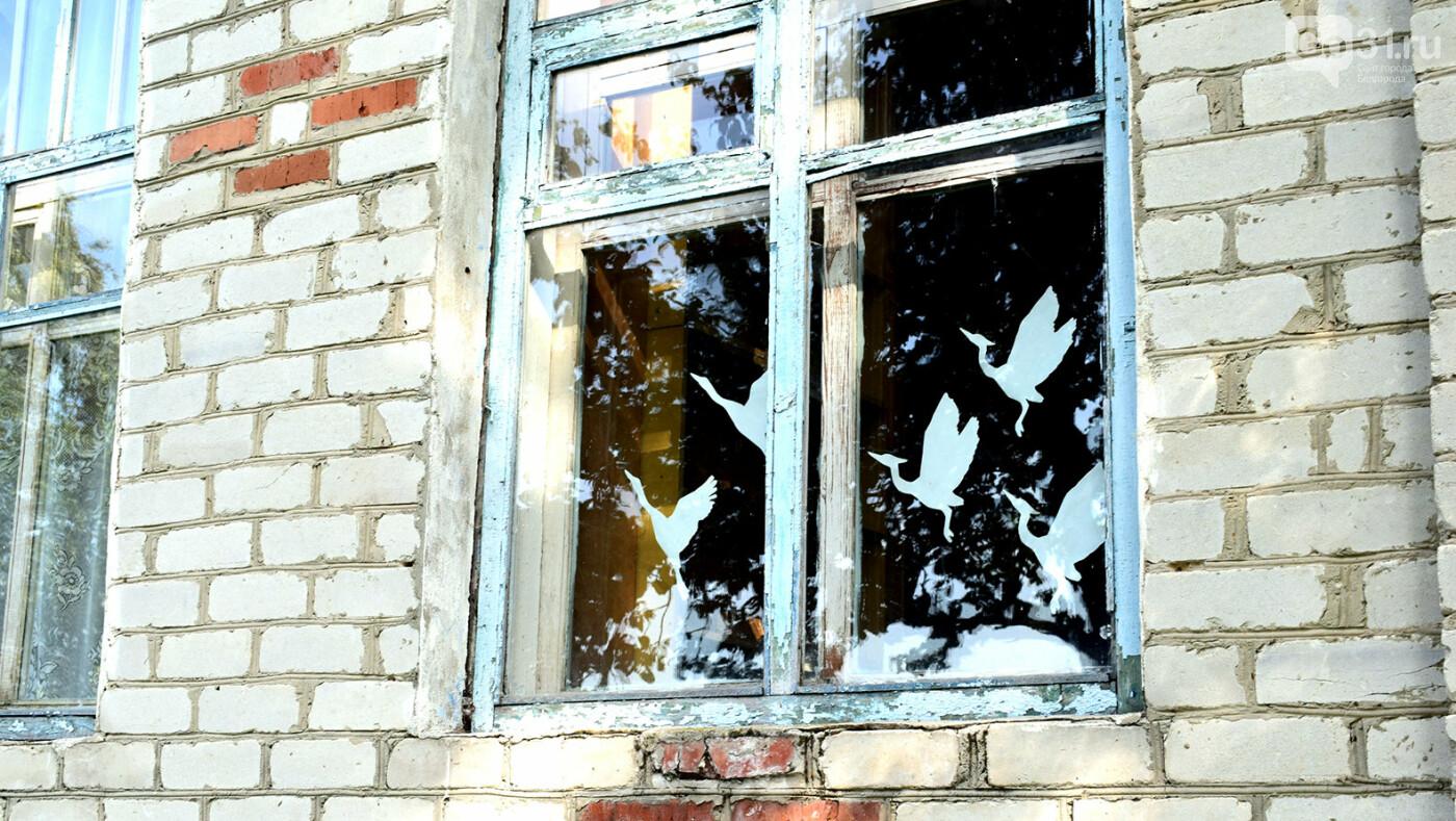 «Люди были против». Как живётся в белгородском селе год спустя после закрытия школы, фото-3