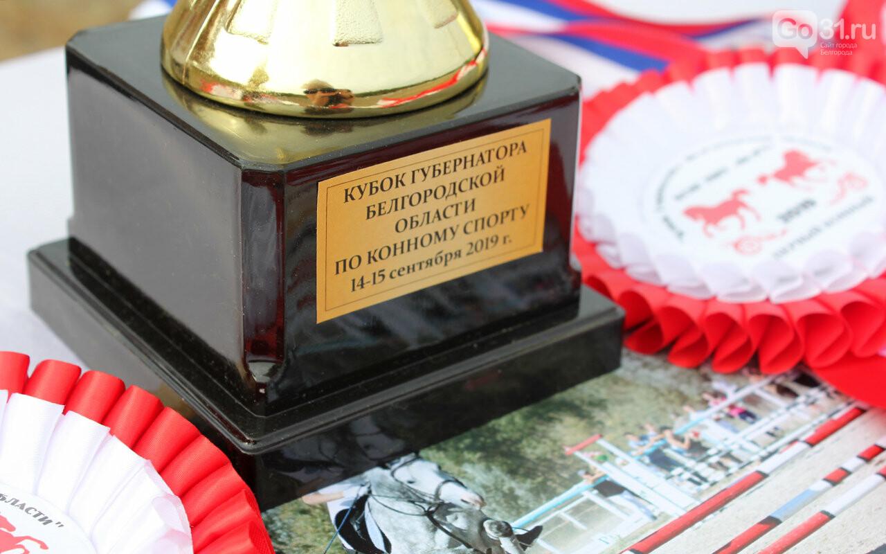 В Белгороде за Кубок губернатора по конному спорту борются 12 команд, фото-15