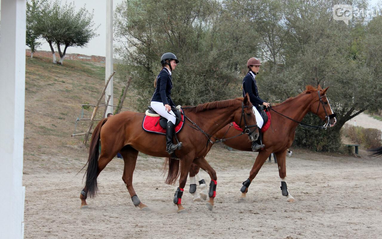 В Белгороде за Кубок губернатора по конному спорту борются 12 команд, фото-3