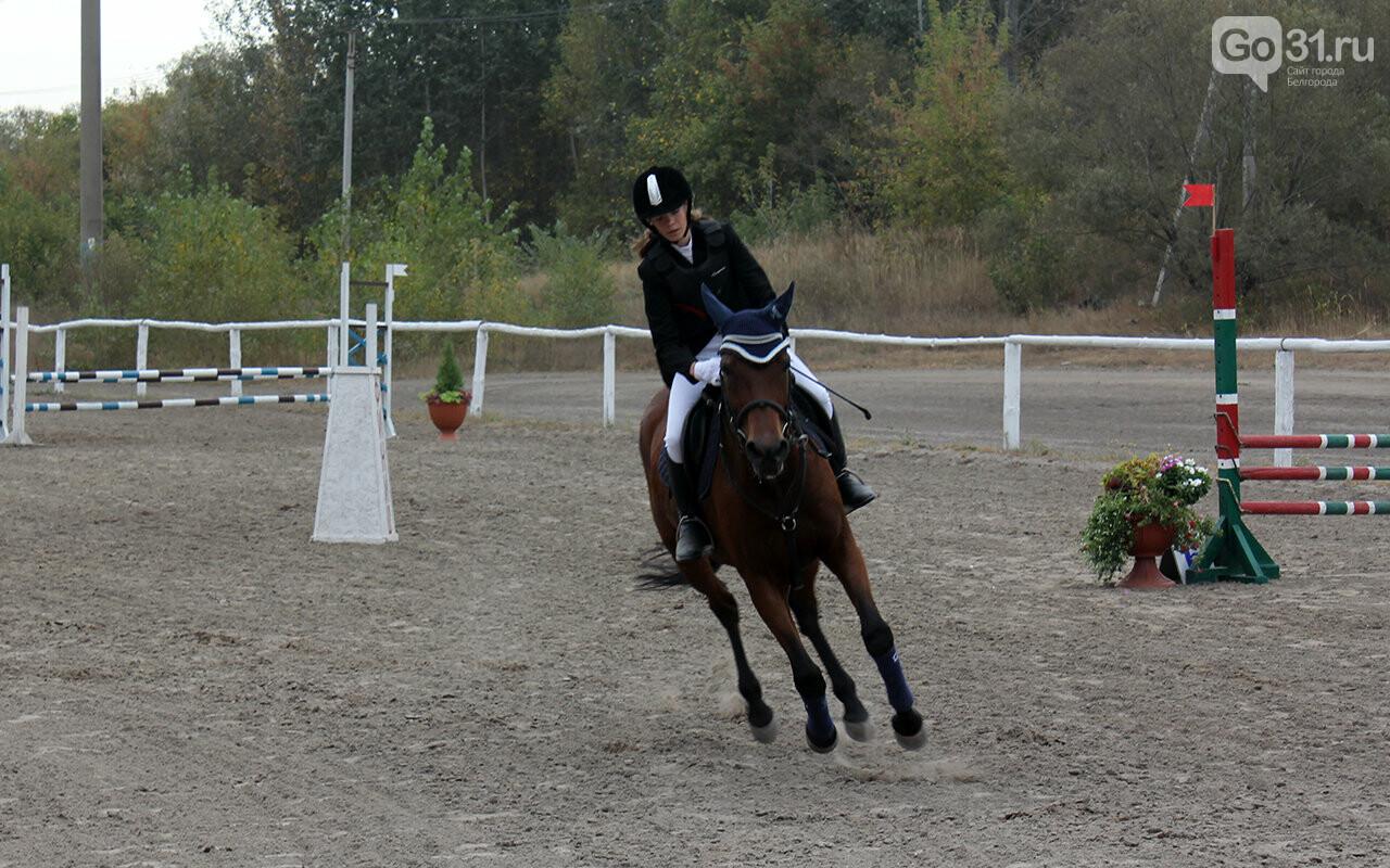В Белгороде за Кубок губернатора по конному спорту борются 12 команд, фото-10