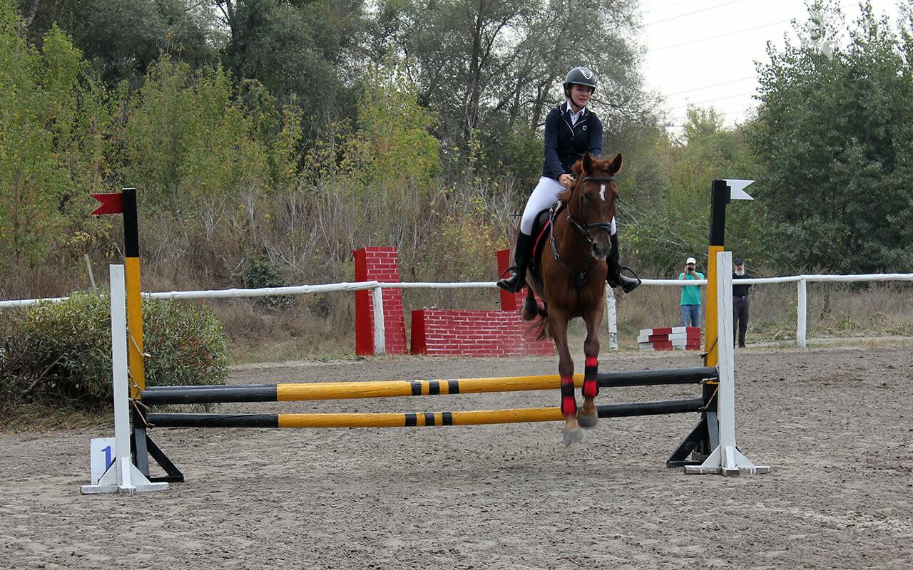 В Белгороде за Кубок губернатора по конному спорту борются 12 команд, фото-17