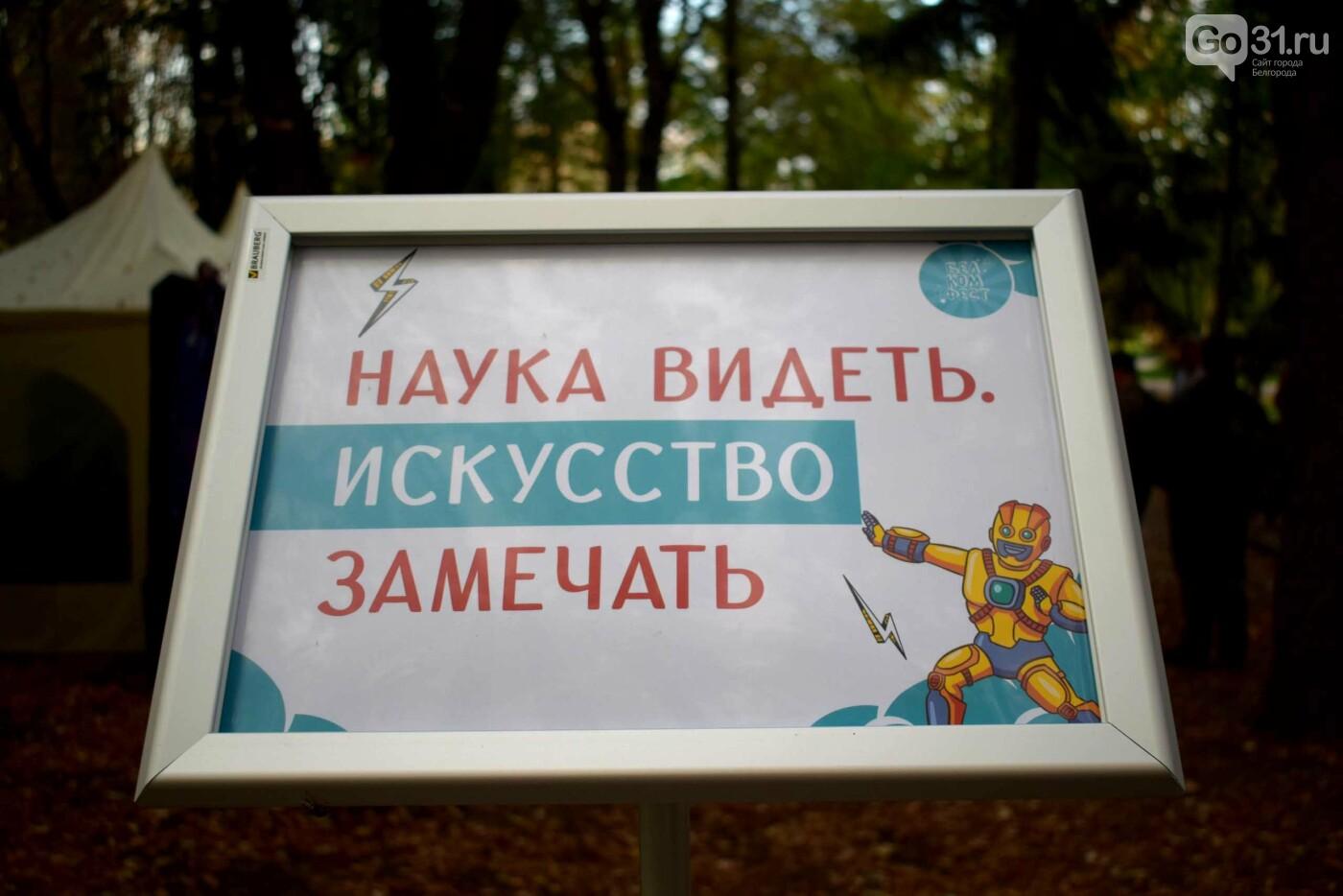 Комиксы, куклы, карильон. В Белгороде прошёл фестиваль «Я – в культуре. Культура – во мне», фото-2