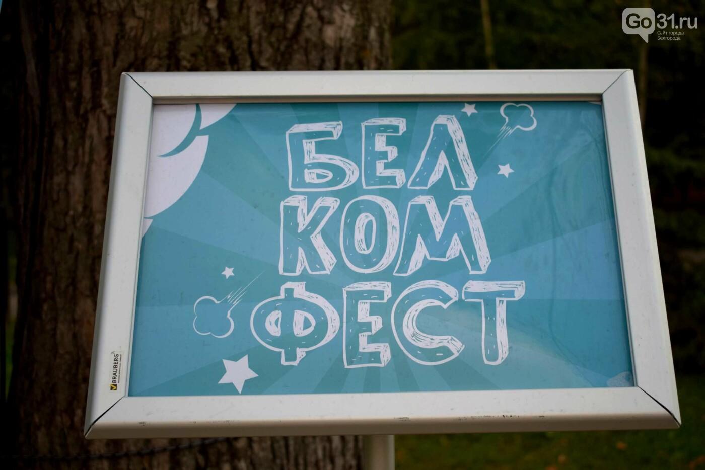 Комиксы, куклы, карильон. В Белгороде прошёл фестиваль «Я – в культуре. Культура – во мне», фото-5