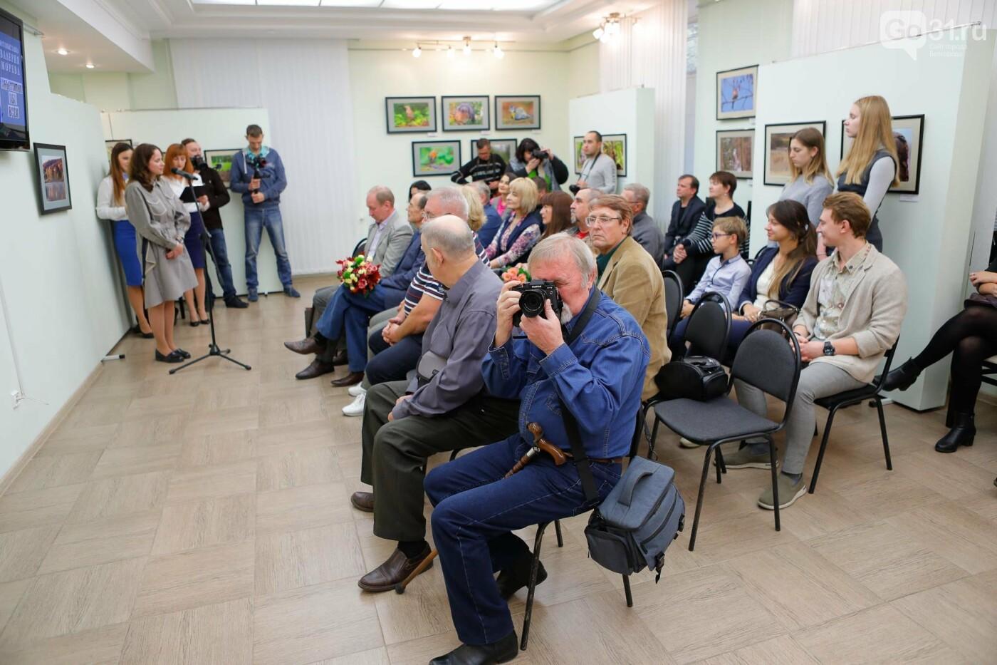 «Вежливое кредо». В Белгороде открылась персональная фотовыставка Валерия Морева, фото-16