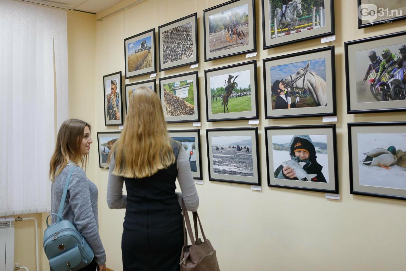 «Вежливое кредо». В Белгороде открылась персональная фотовыставка Валерия Морева, фото-18