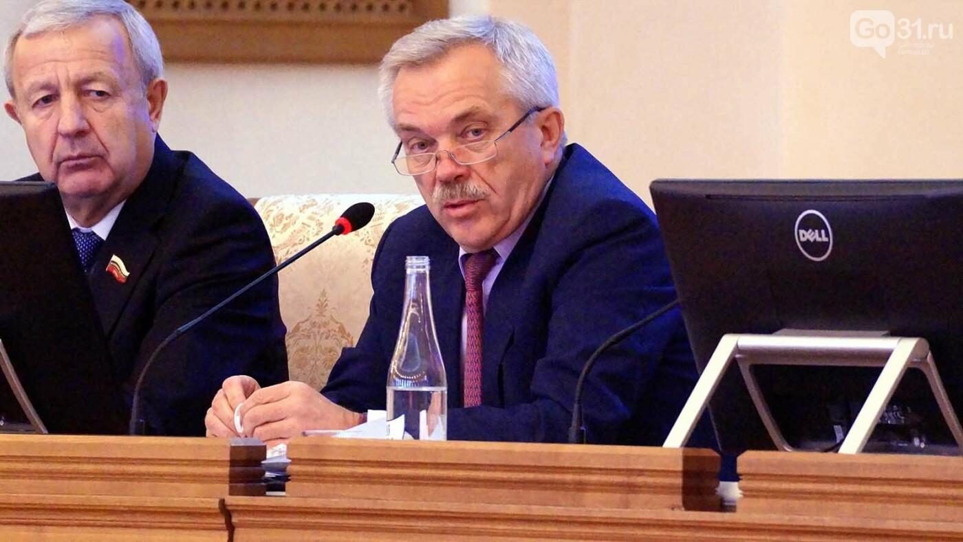 Николай Незнамов: В Белгородской области не всё гладко с деловым климатом, фото-2