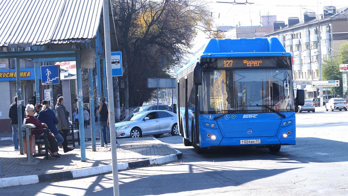 Владимир Боровик: Я тоже иногда сажусь на автобус и еду, фото-2