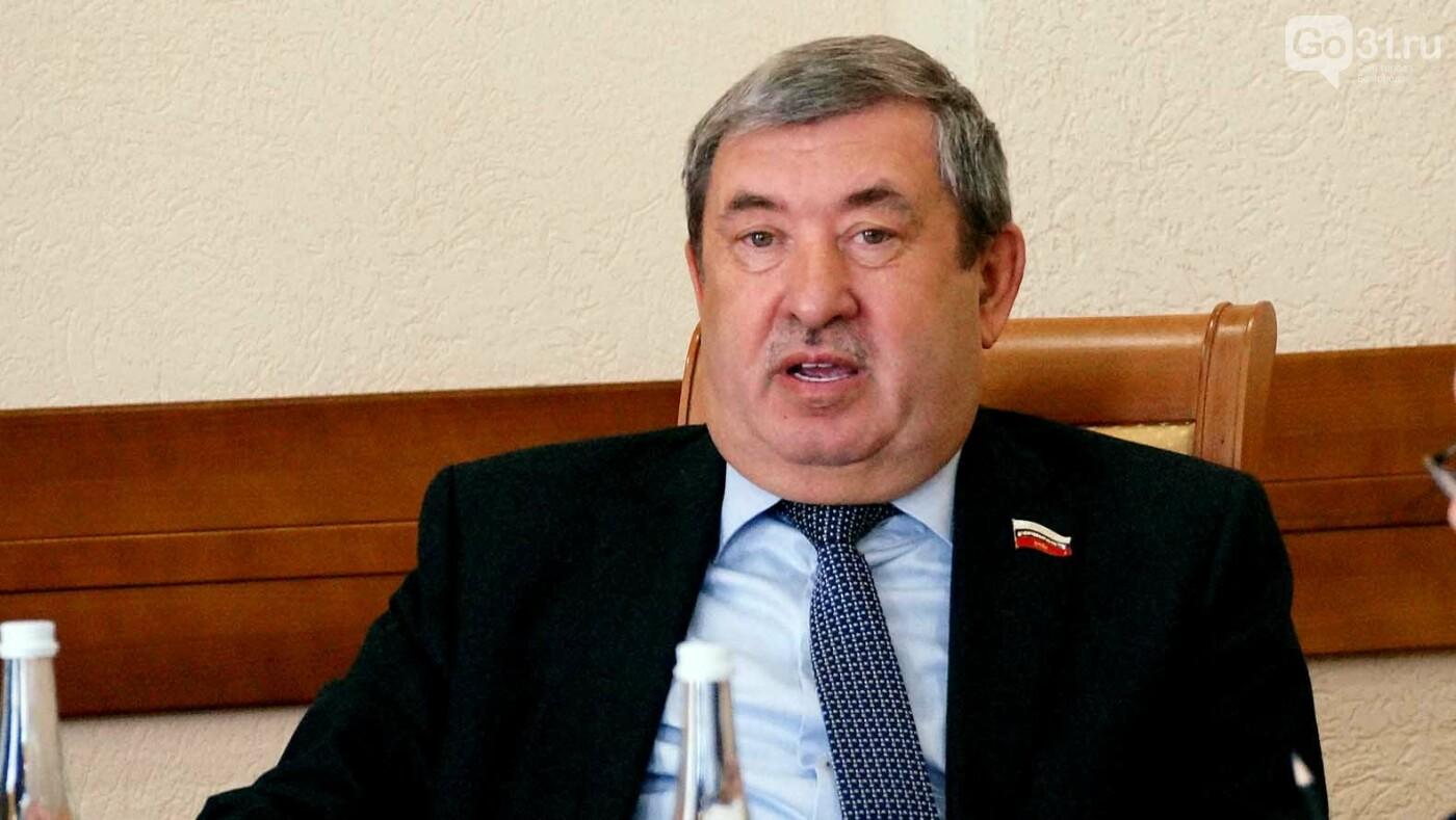 «От власти реакции нет». Белгородские депутаты обсудили дорожное строительство, фото-2
