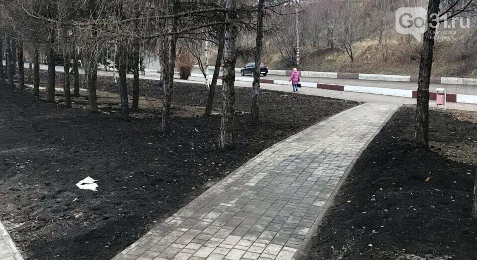 «Как по этим ступеням с коляской ходить?» Белгородцы оценили обновлённый сквер «Южный», фото-8