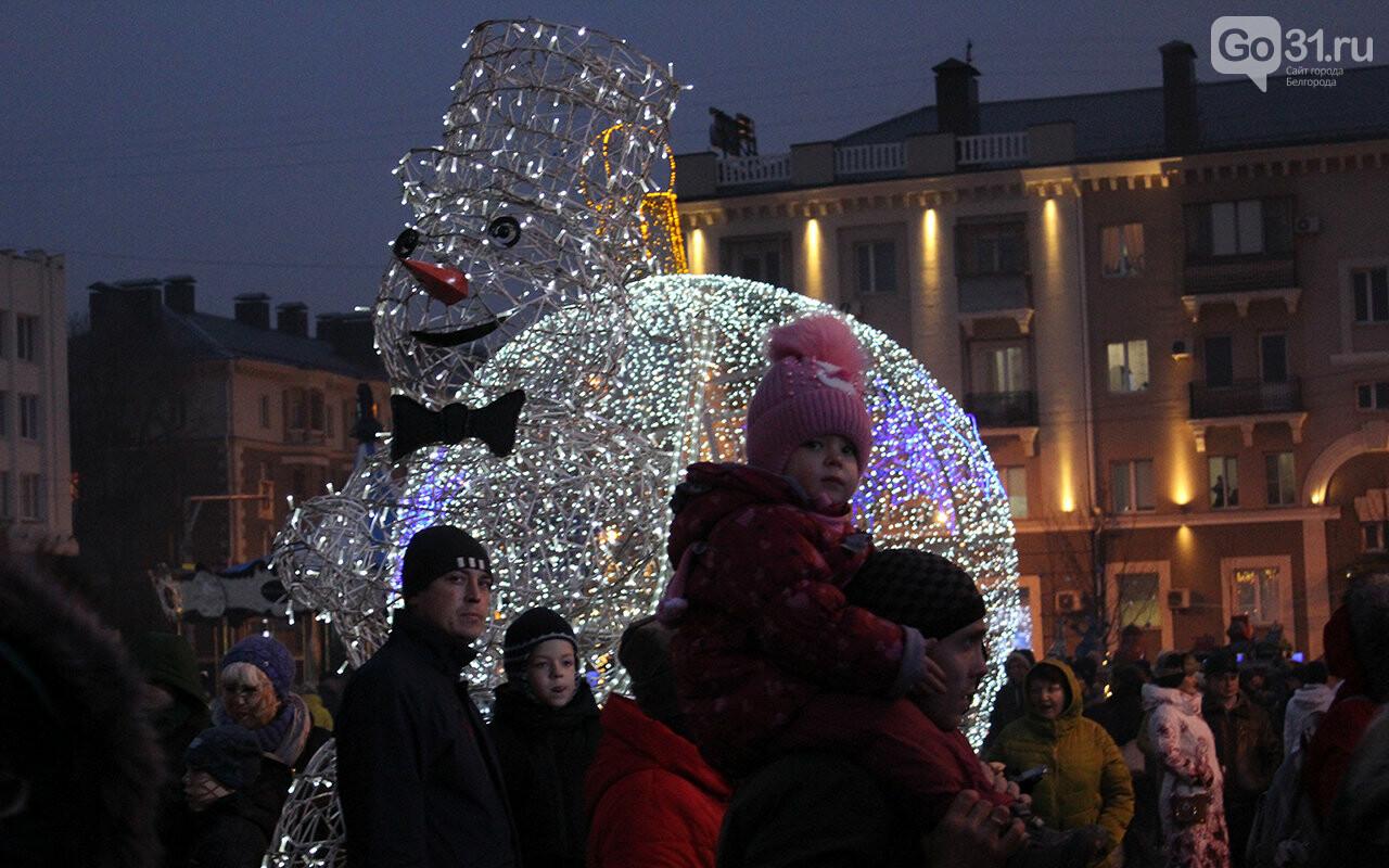 В Белгороде зажгли огни на главной ёлке города, фото-2