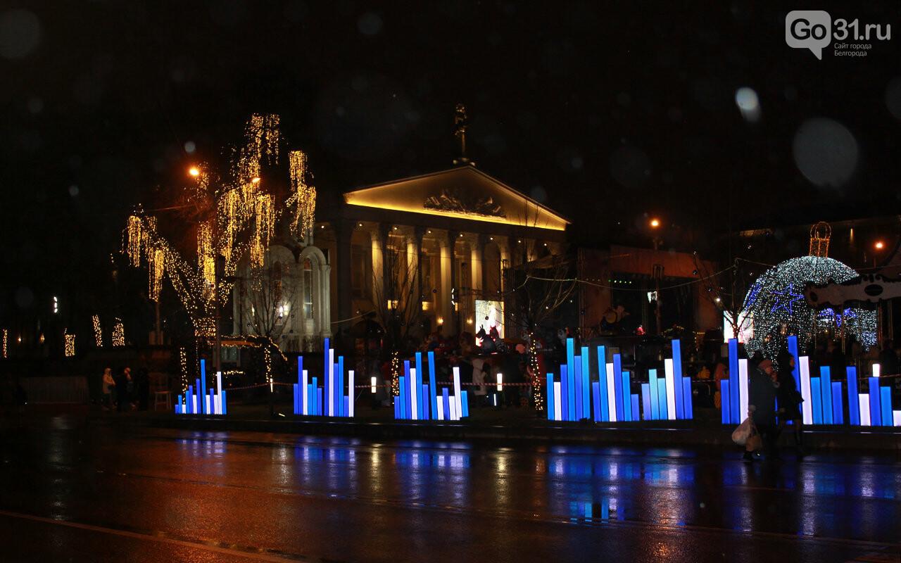 В Белгороде зажгли огни на главной ёлке города, фото-11