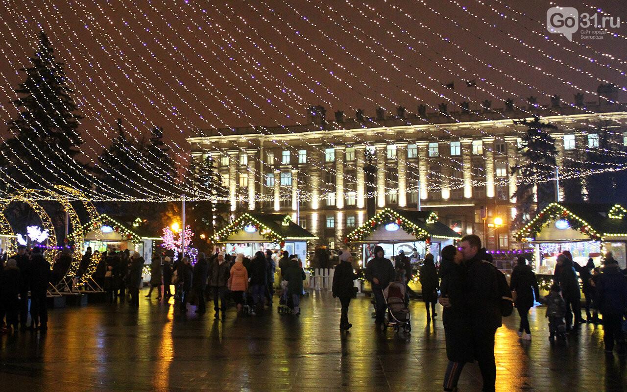 В Белгороде зажгли огни на главной ёлке города, фото-14
