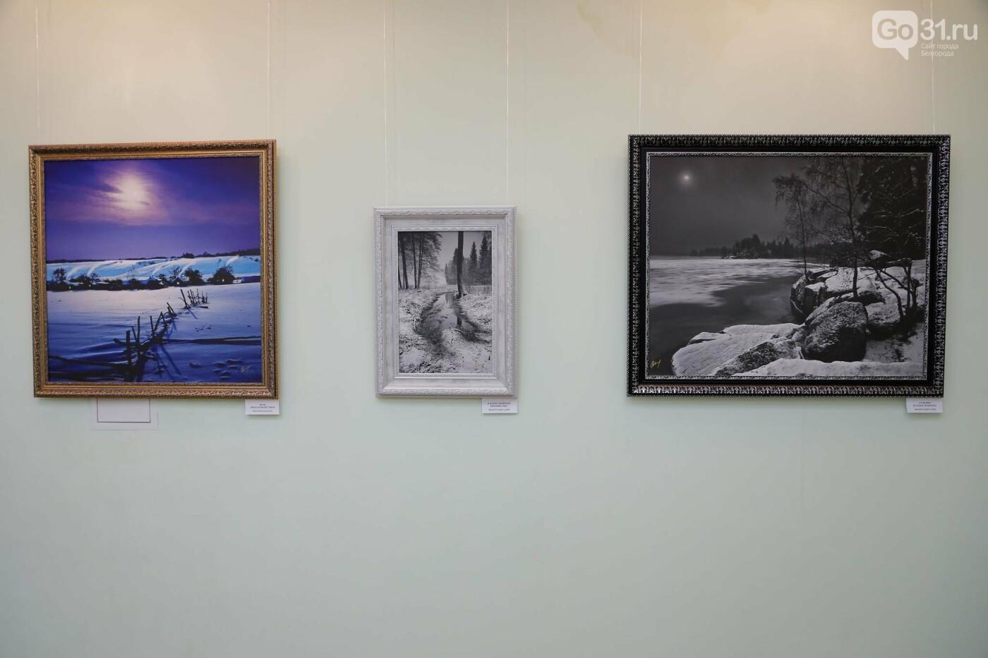 В Белгороде открылась персональная фотовыставка Владимира Щекалова, фото-12