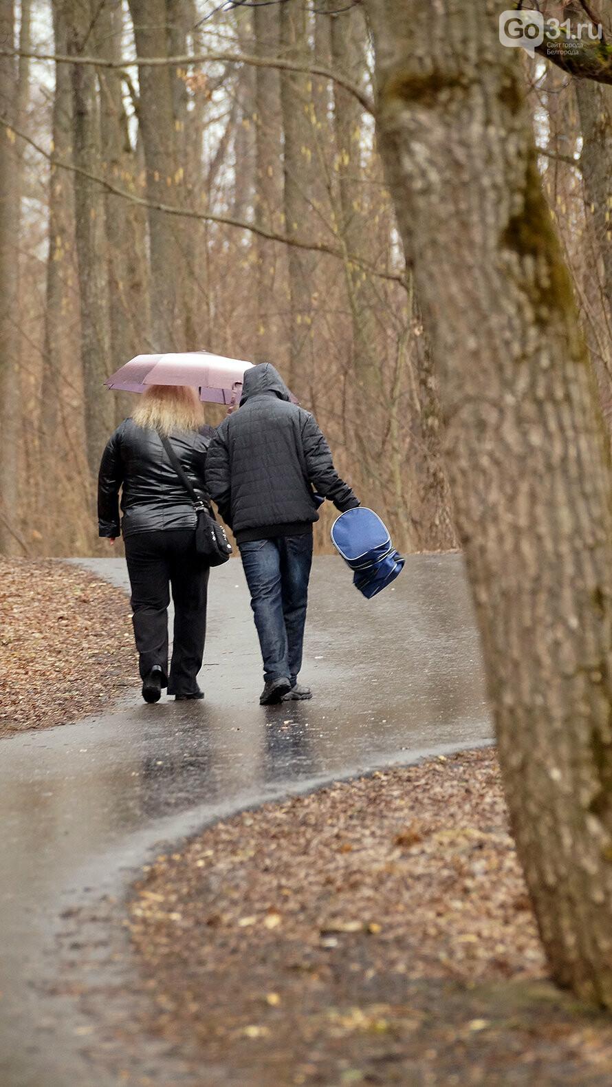 Кого и что можно встретить в лесу Маршалково в Строителе, фото-7