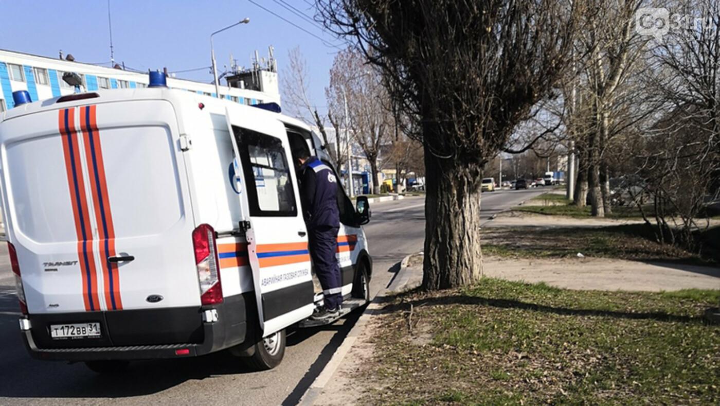 В Белгороде на улице Волчанской работают спецслужбы, фото-1