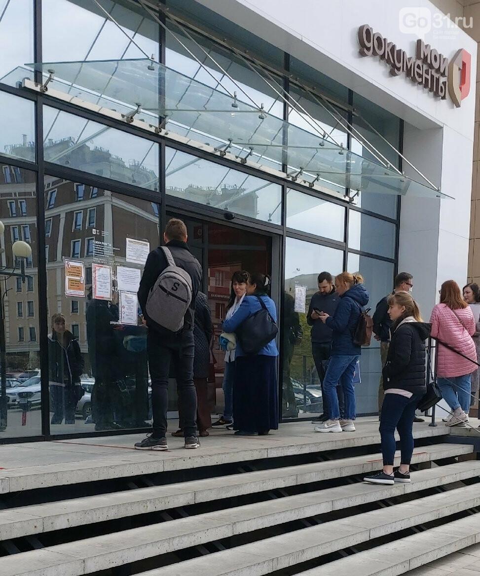 Белгородцы начали осаждать МФЦ, фото-2