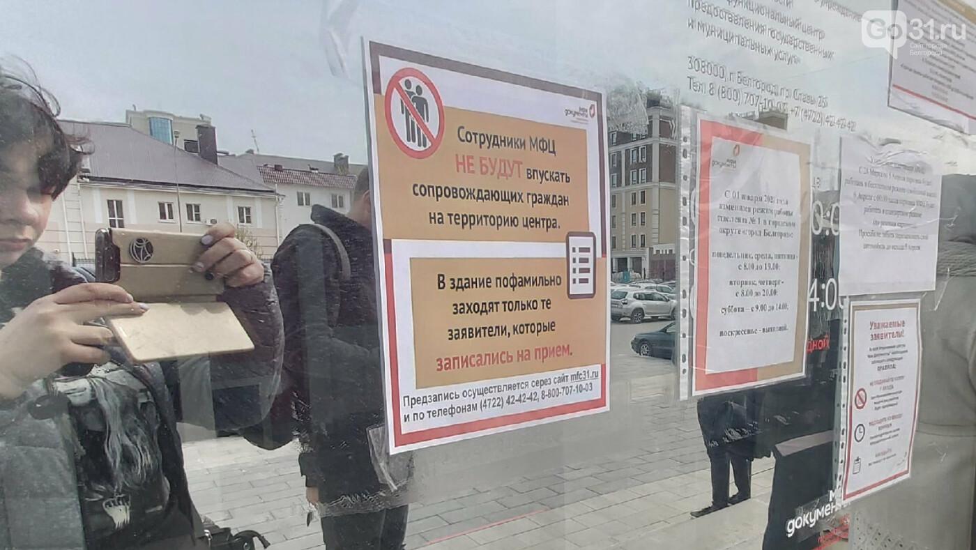 Белгородцы начали осаждать МФЦ, фото-4