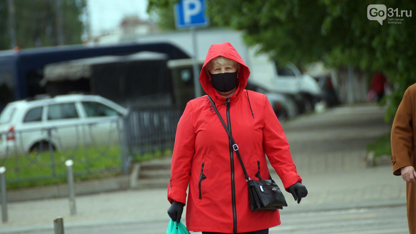 Ниже плинтуса. В Белгороде рекордно упал индекс самоизоляции, фото-3, Фото: Сергей Егоров