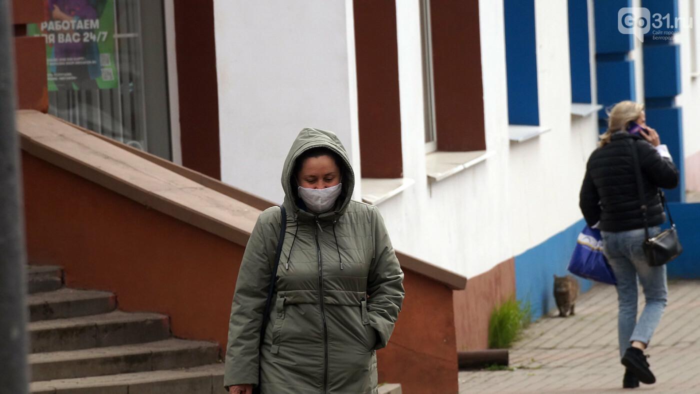 Ниже плинтуса. В Белгороде рекордно упал индекс самоизоляции, фото-5, Фото: Сергей Егоров