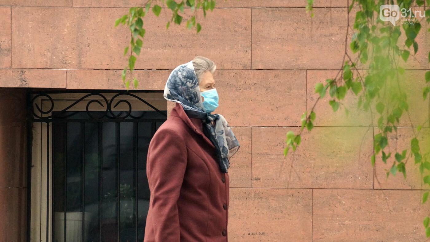 Ниже плинтуса. В Белгороде рекордно упал индекс самоизоляции, фото-8, Фото: Сергей Егоров