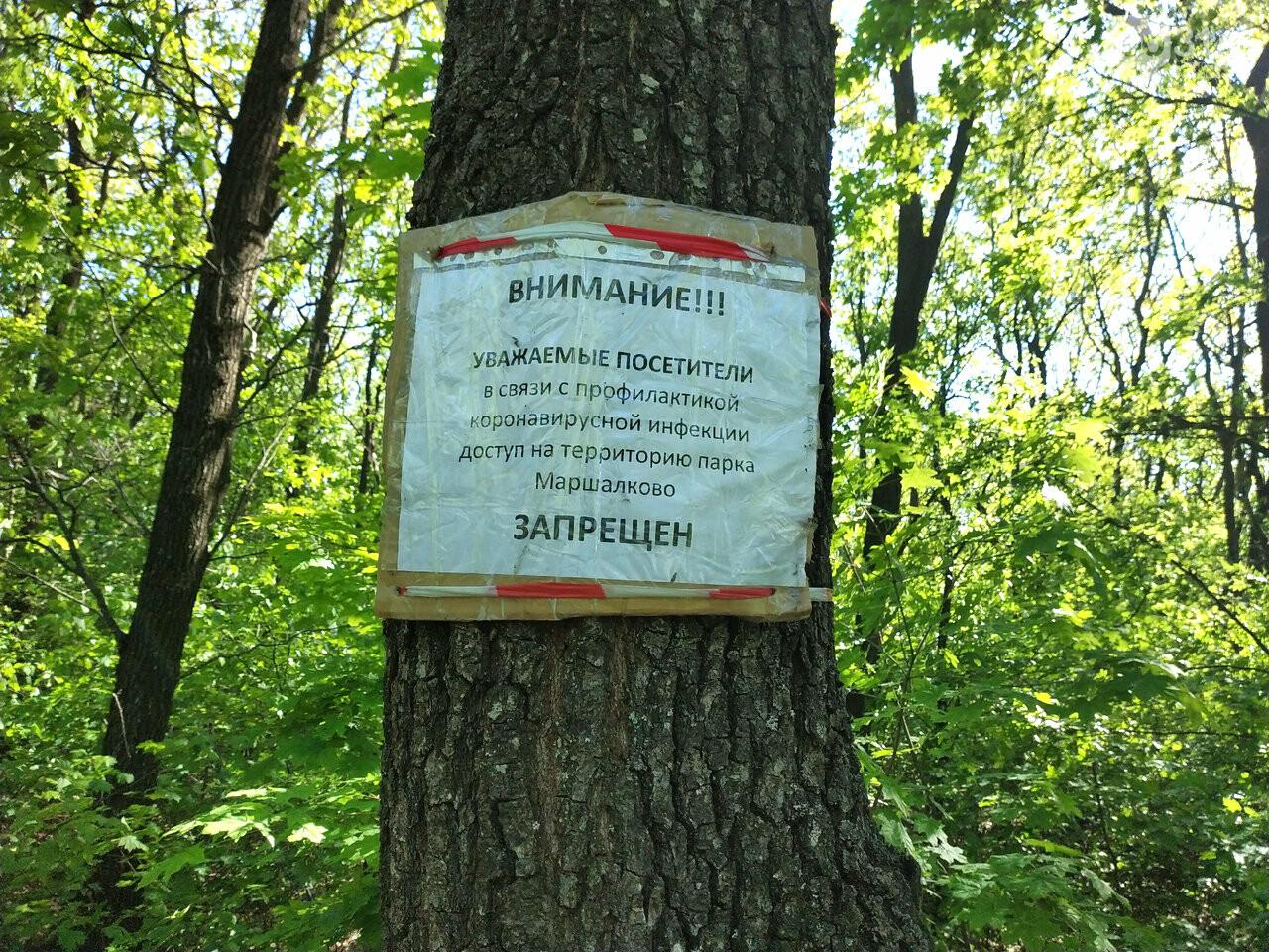 В масках или без? Как регламентируются прогулки в парке Маршалково в Строителе, фото-2