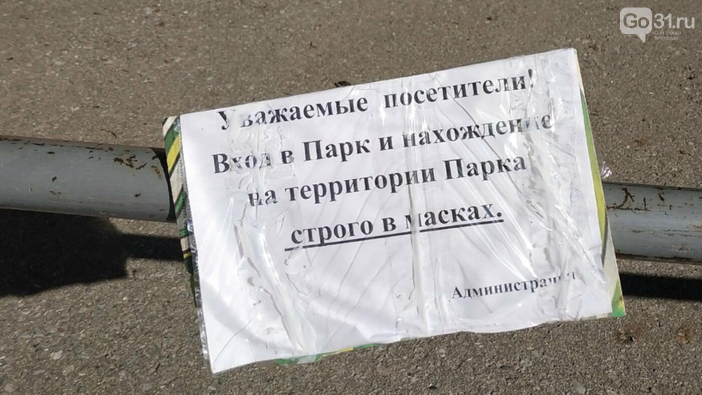 В масках или без? Как регламентируются прогулки в парке Маршалково в Строителе, фото-1