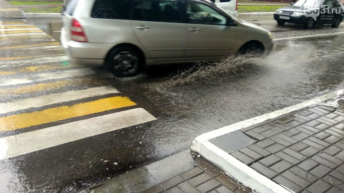 Сильный дождь проверил на прочность новую ливнёвку в центре Белгорода, фото-6