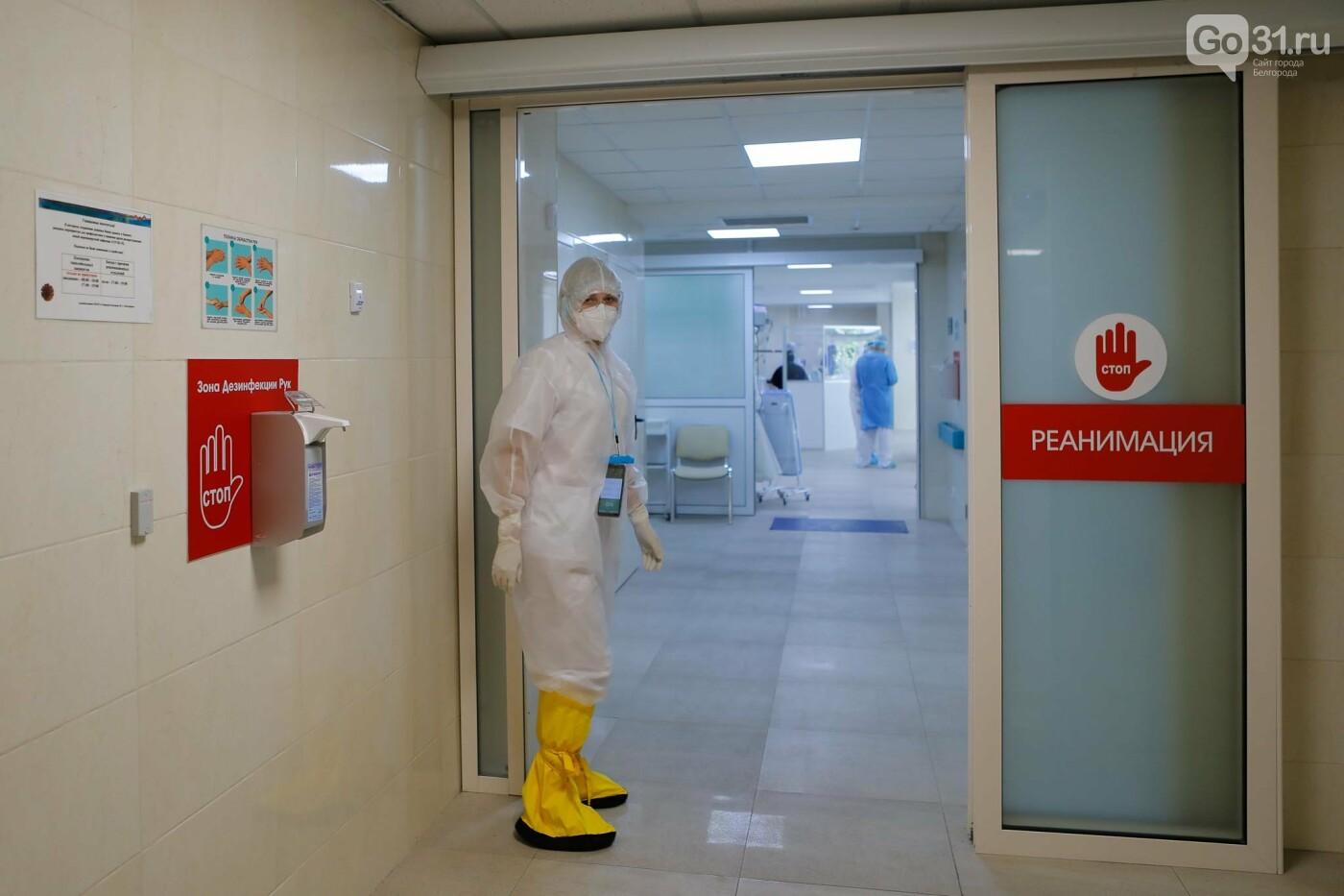 Что происходит в ковид-госпитале Белгорода. Фоторепортаж из «красной» зоны, фото-6, Фото: Антон Вергун