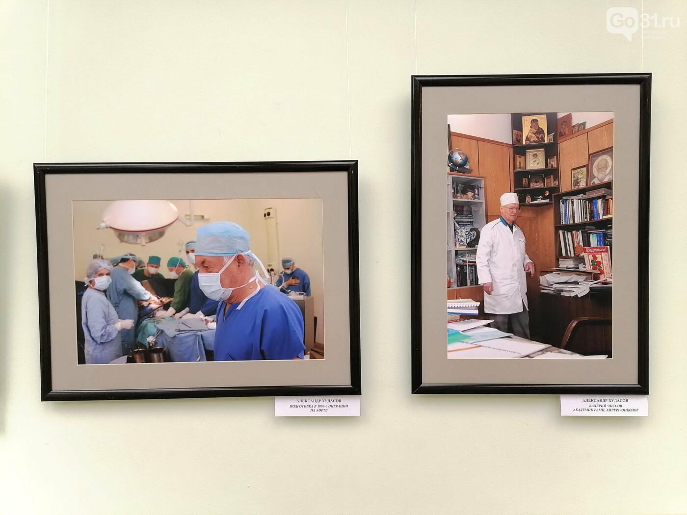 В Белгороде открылась фотовыставка, посвящённая медикам, фото-9