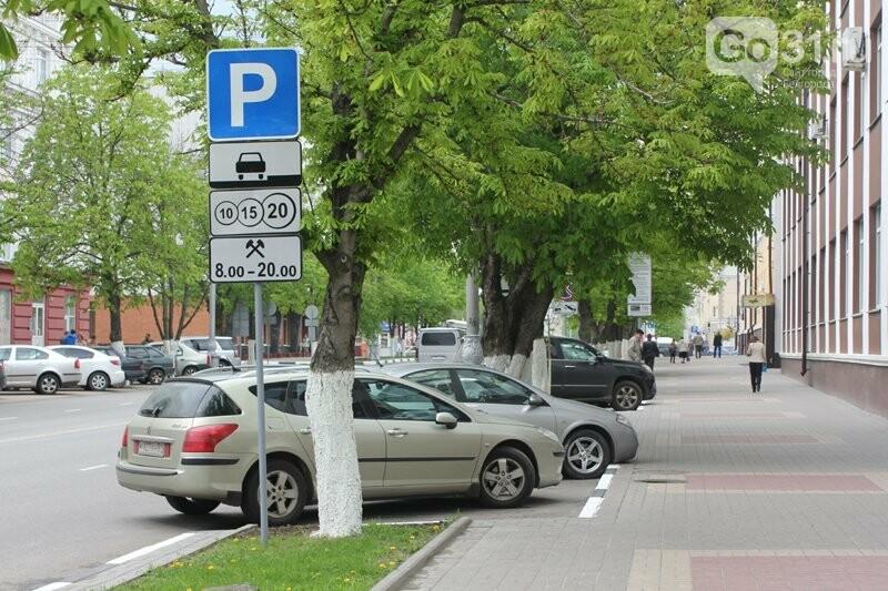 Мэр Белгорода рассказал о планах по расширению платных парковок, фото-2