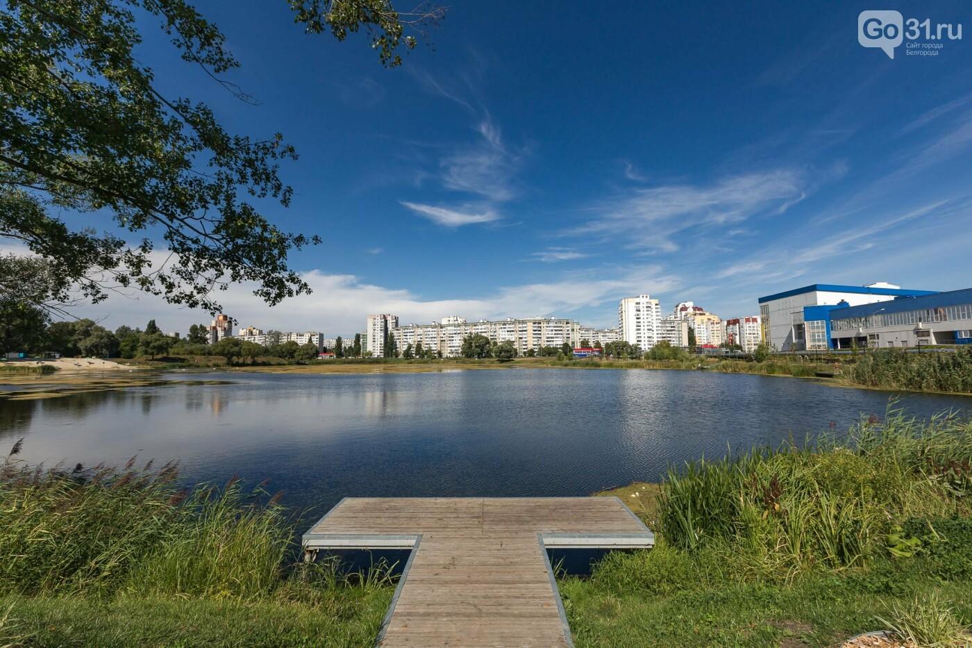 Кого можно встретить в предосеннем Белгороде. Фоторепортаж, фото-57, Фото: Антон Вергун
