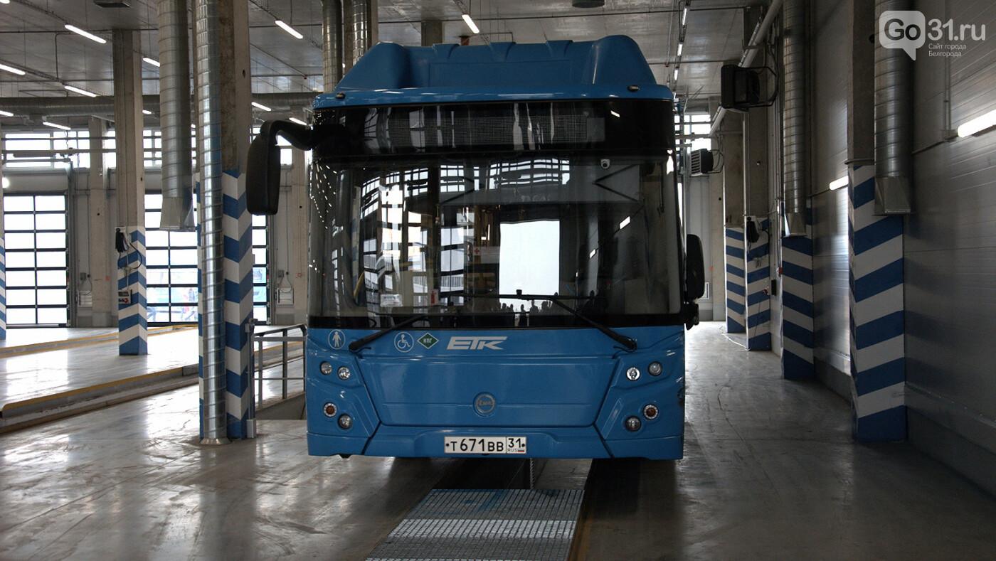 Денис Буцаев: Новые автобусы – иной уровень доступности в Белгороде, фото-4, Фото: Александр Лобынцев