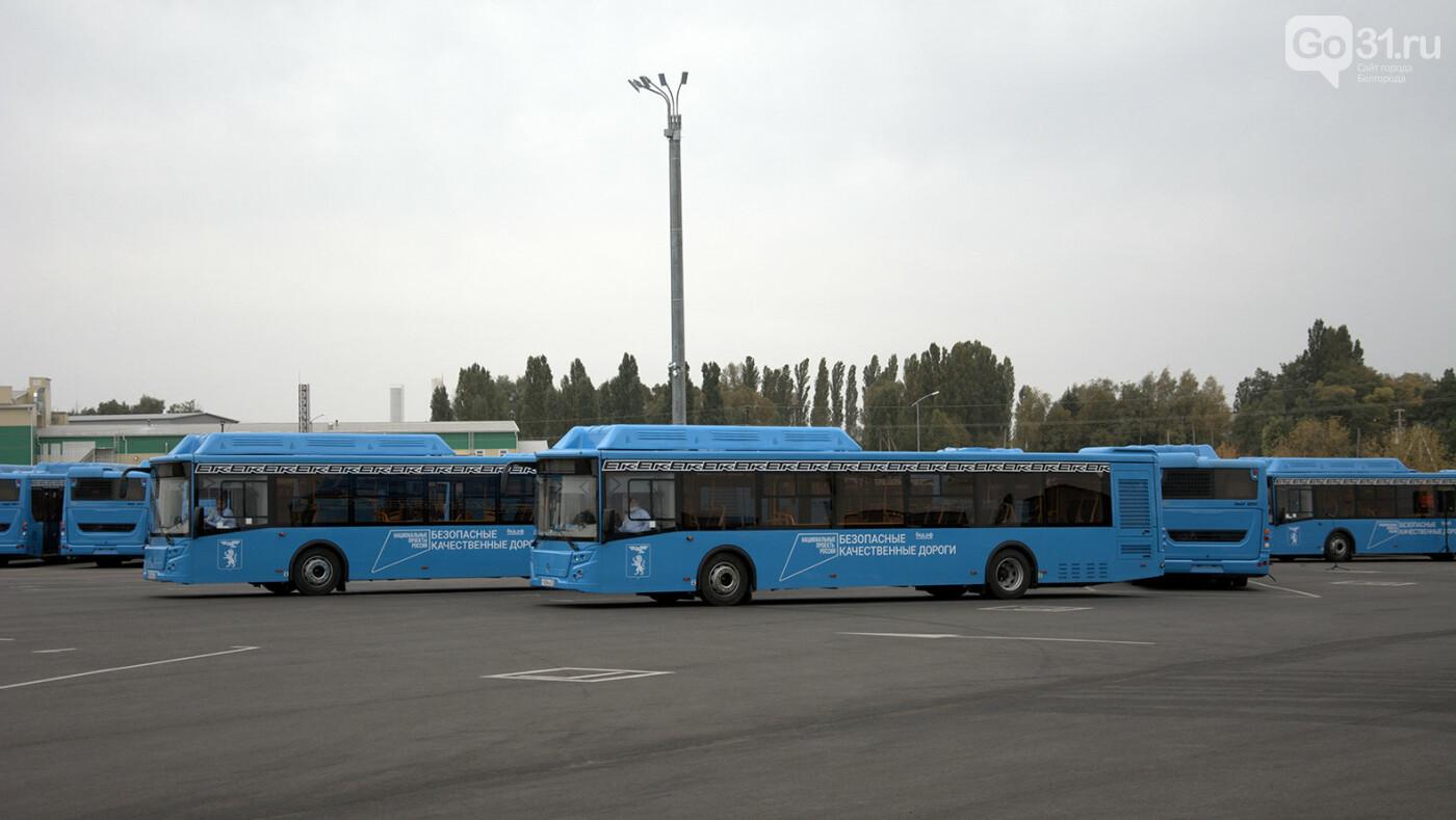 Денис Буцаев: Новые автобусы – иной уровень доступности в Белгороде, фото-5, Фото: Александр Лобынцев