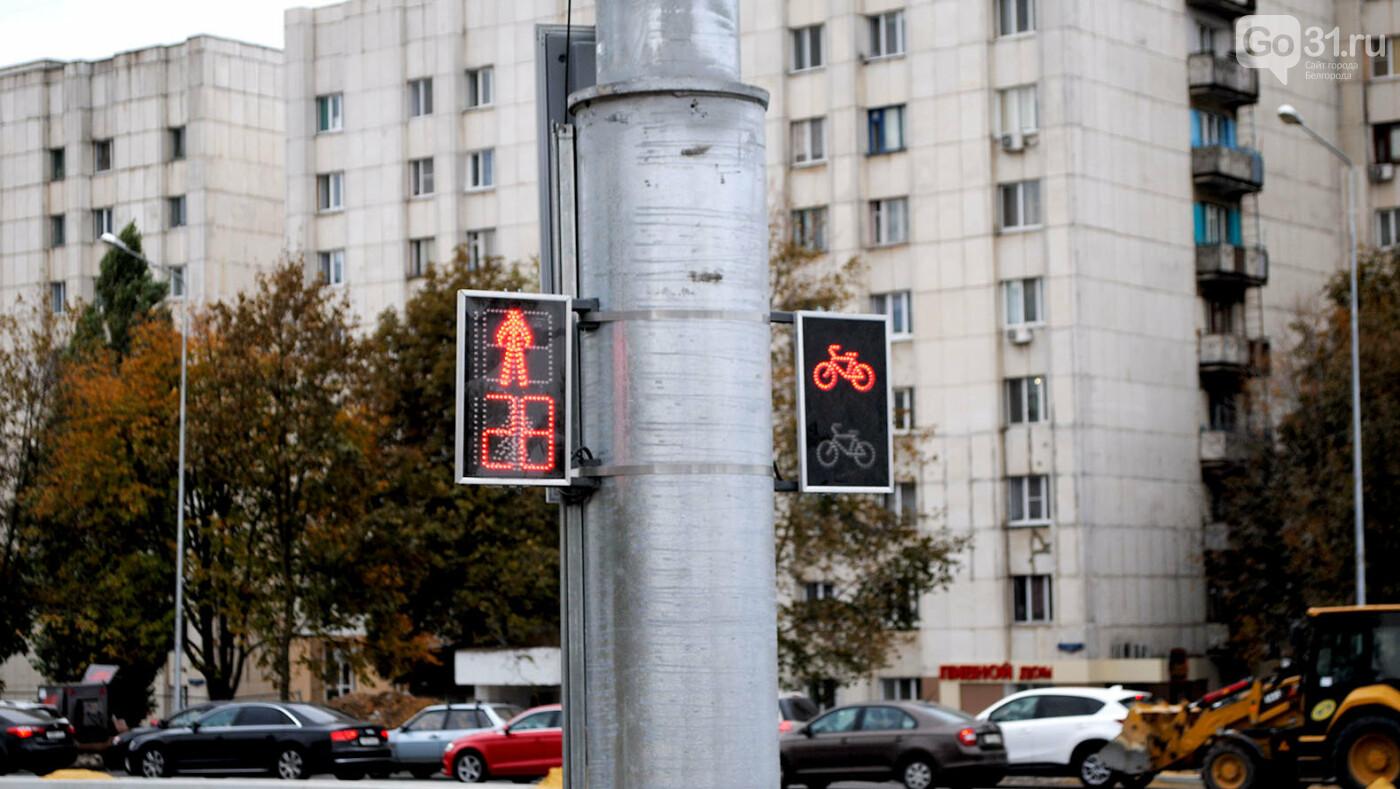 Что делают на Щорса в Белгороде прямо сейчас, фото-7, Фото: Сергей Кудрин
