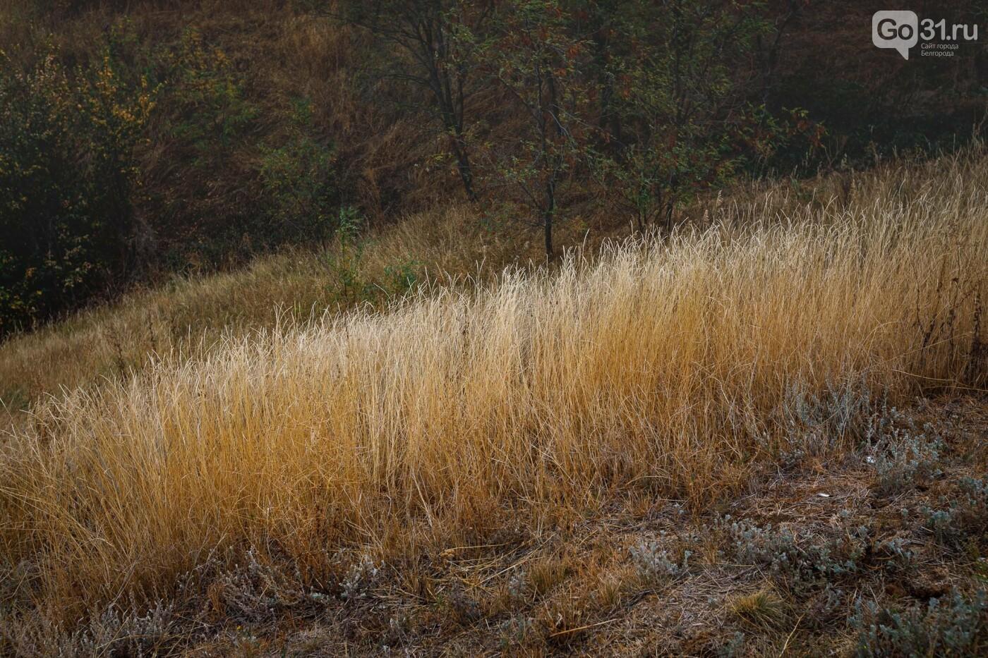 Хотмыжск – по-осеннему. Фоторепортаж, фото-13, Фото: Антон Вергун