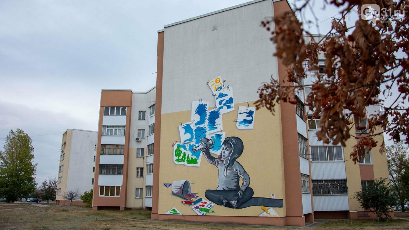 Как на белгородских улицах рождается искусство, фото-13