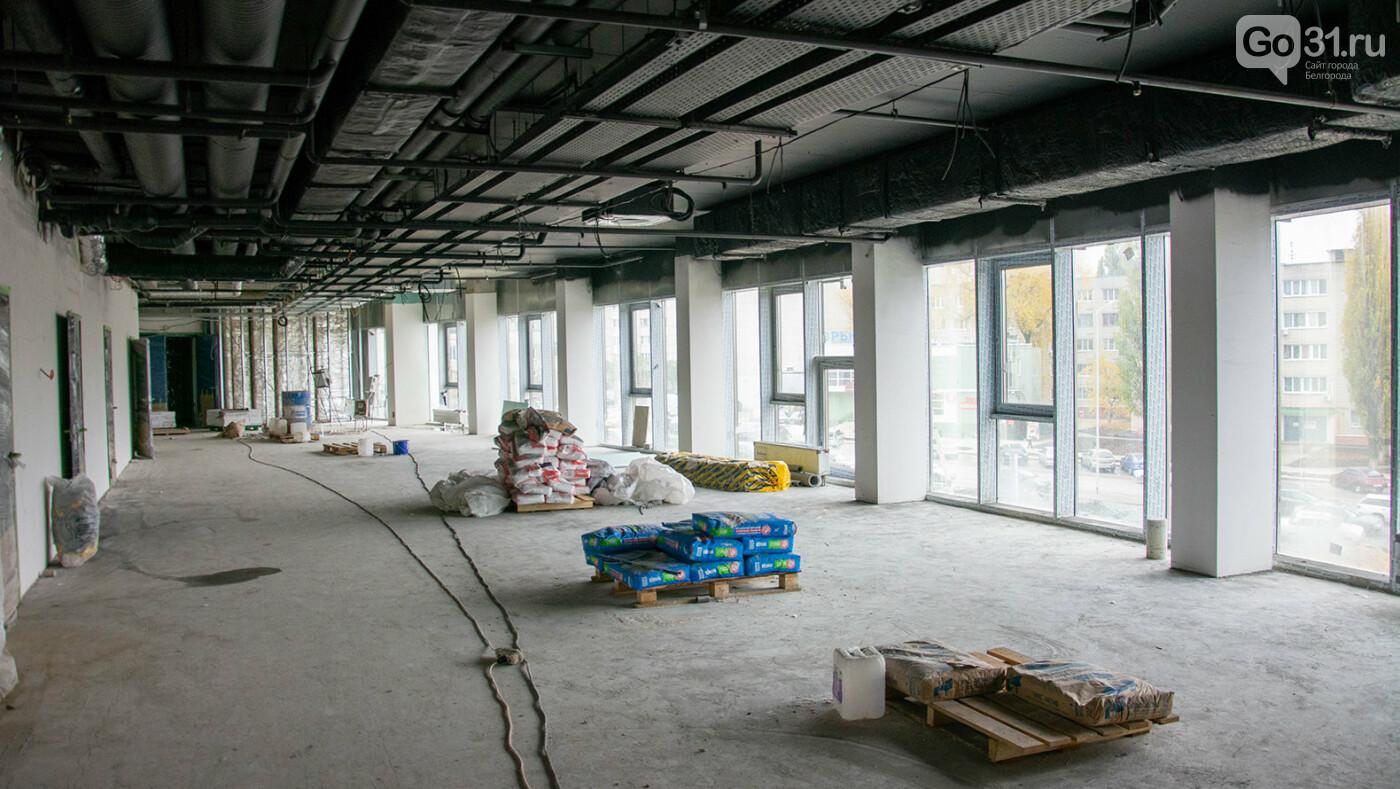 Строительство спортивной арены «Белогорье» в Белгороде, Фото: Александр Лобынцев
