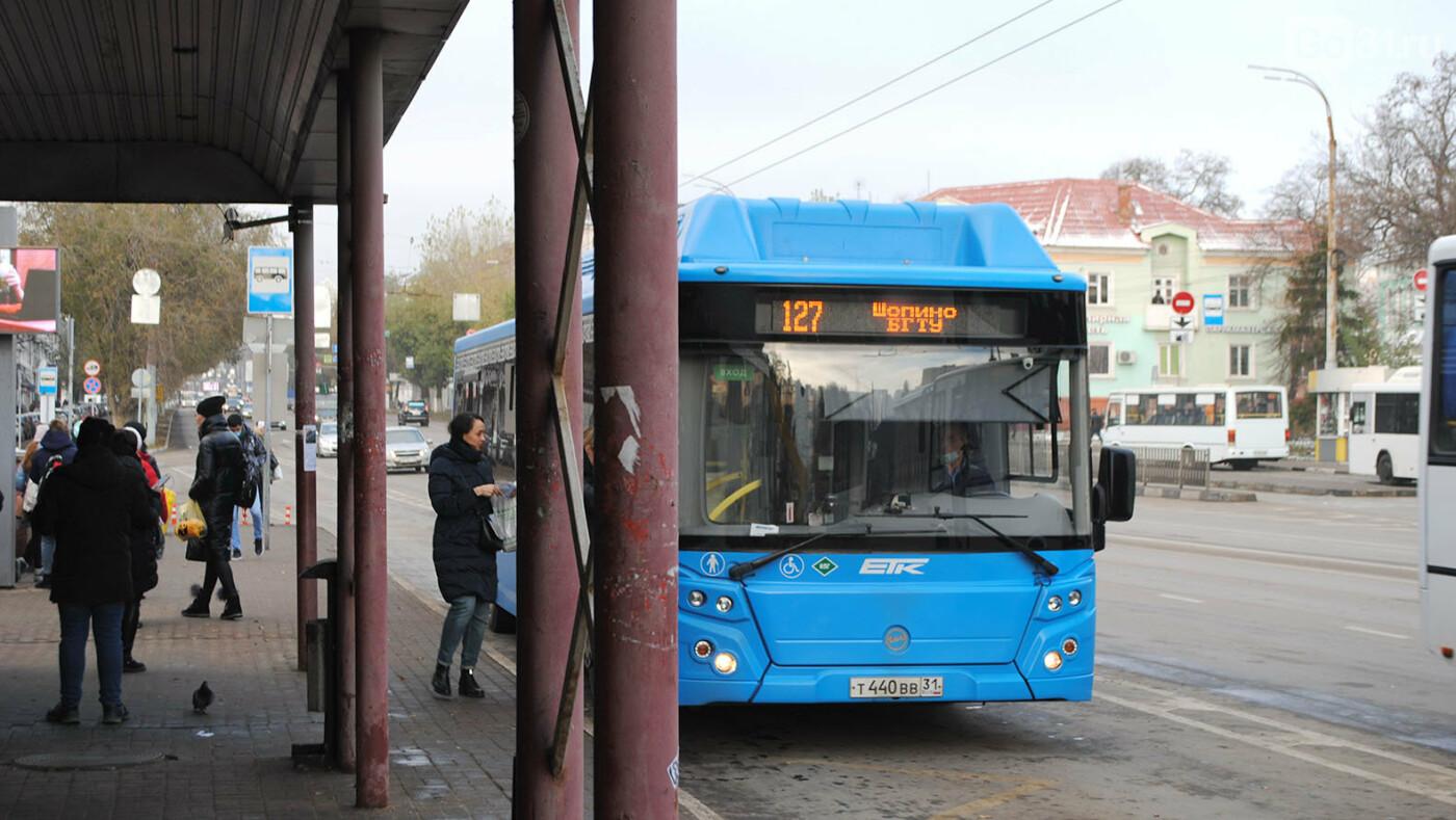 Что белгородцы думают о новой остановке на «Родине», фото-8