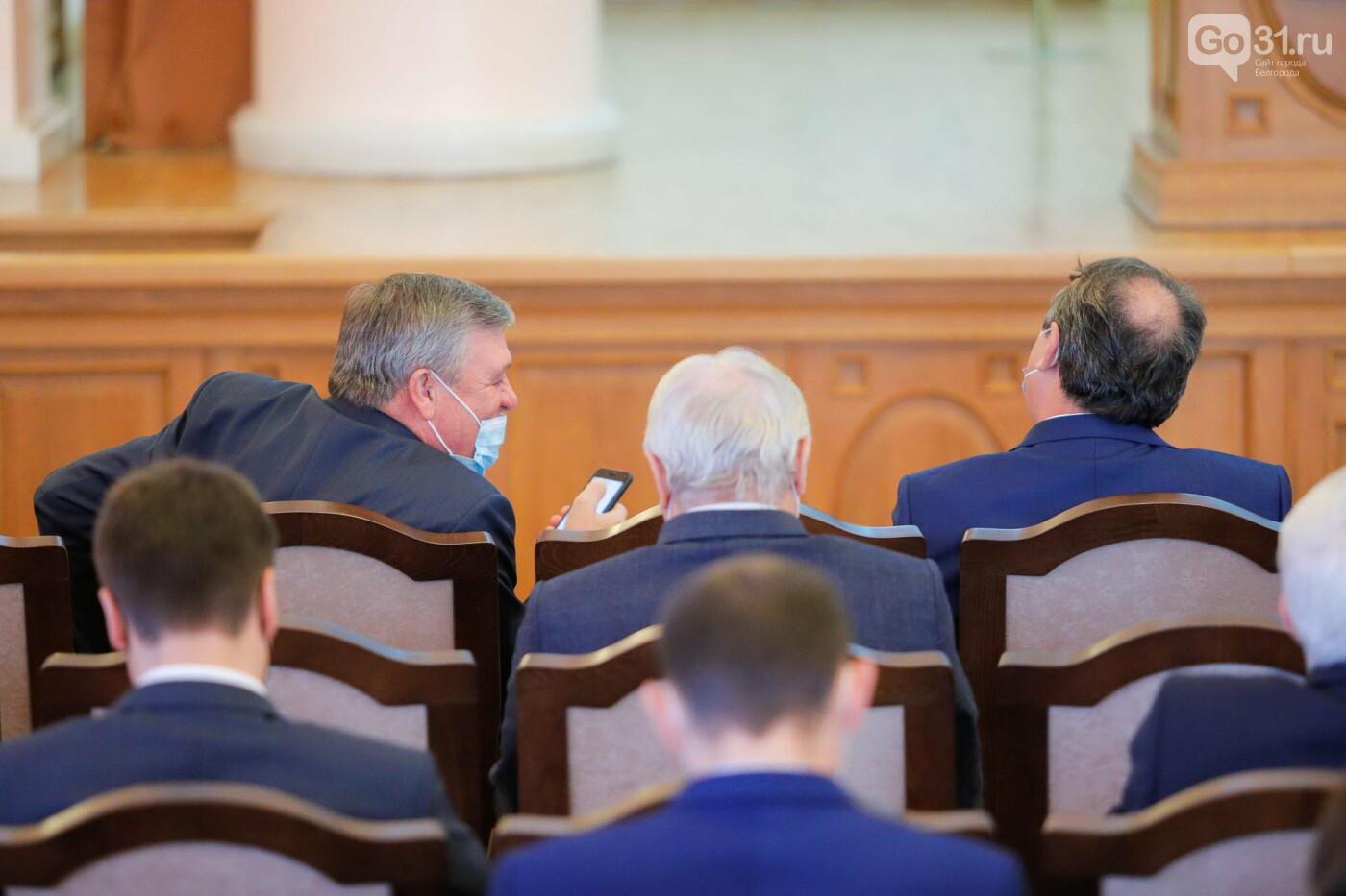 Представление врио губернатора Белгородской области, Фото: Антон Вергун