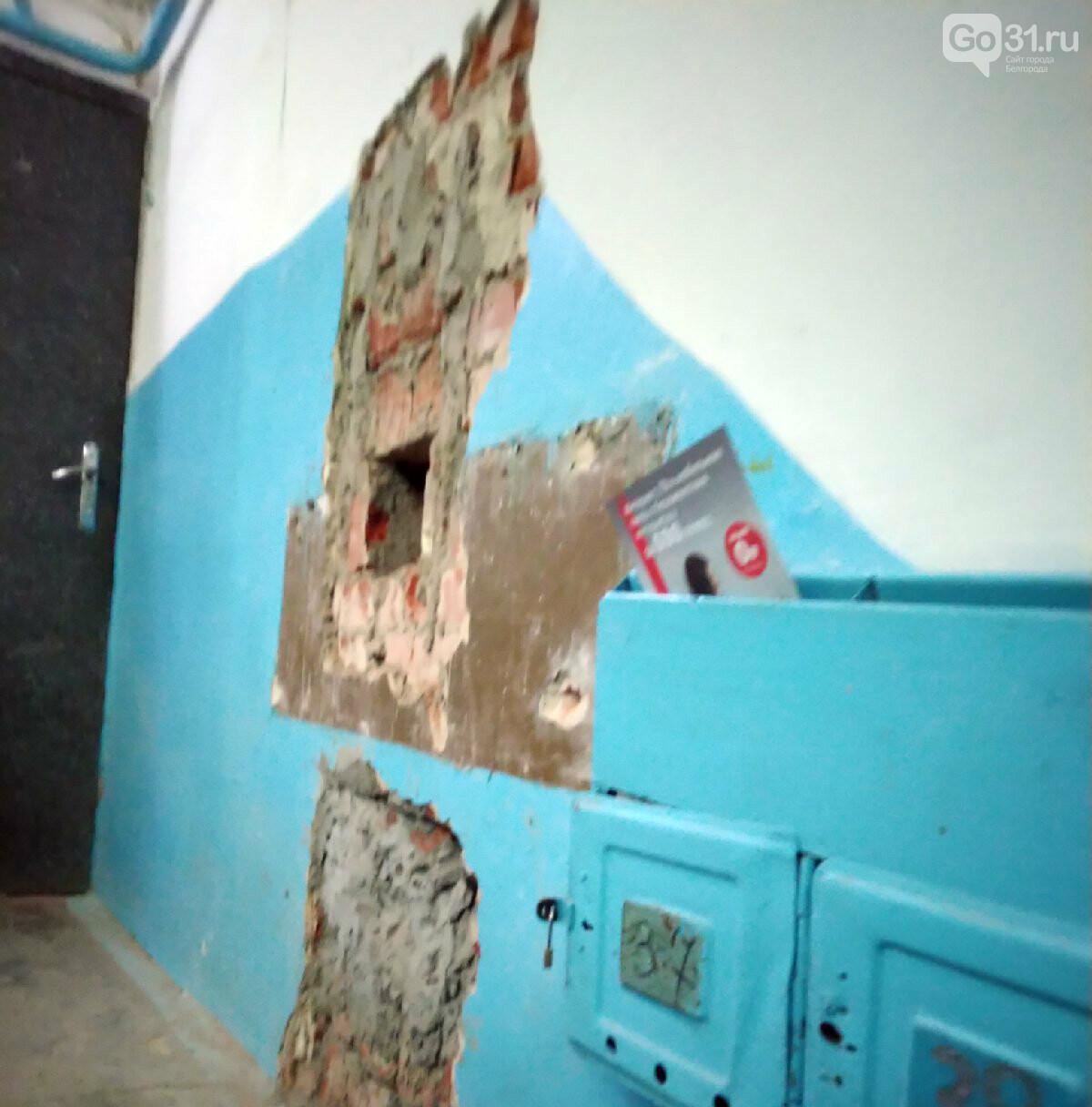 Последствия капремонта на улице Белгородского полка, 24 в Белгороде