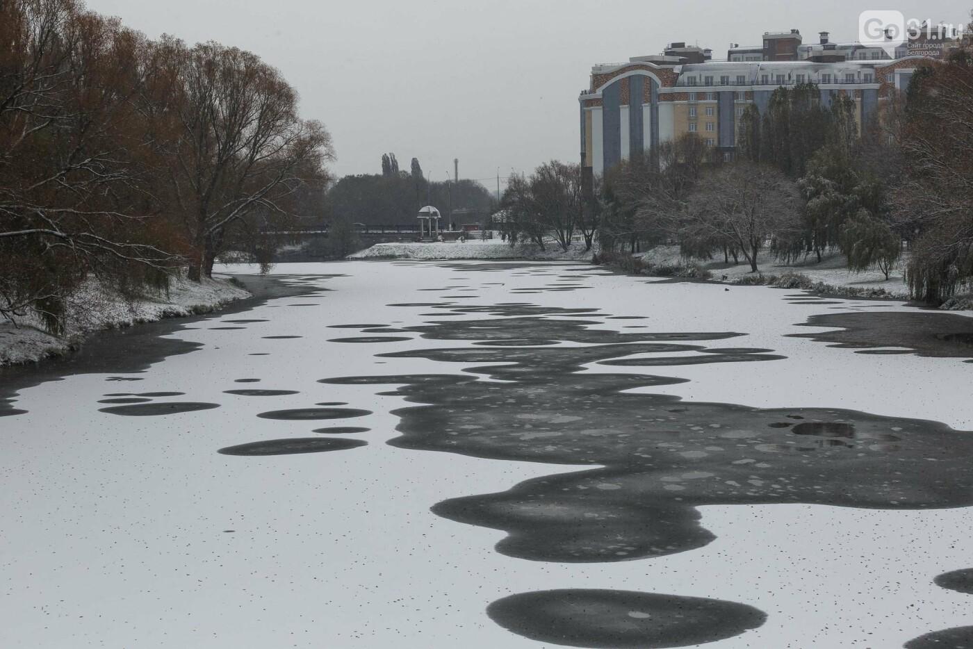 В Белгороде открылась фотовыставка «Зимние истории», фото-29, Фото: Антон Вергун