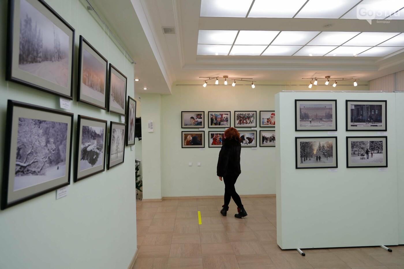 Открытие выставки «Зимние истории» в белгородской галерее фотоискусства им. В. А. Собровина, Фото: Антон Вергун